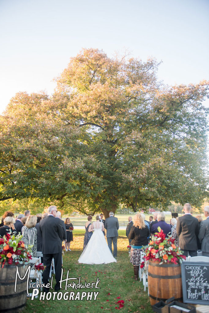 Wedding by the Linden Tree