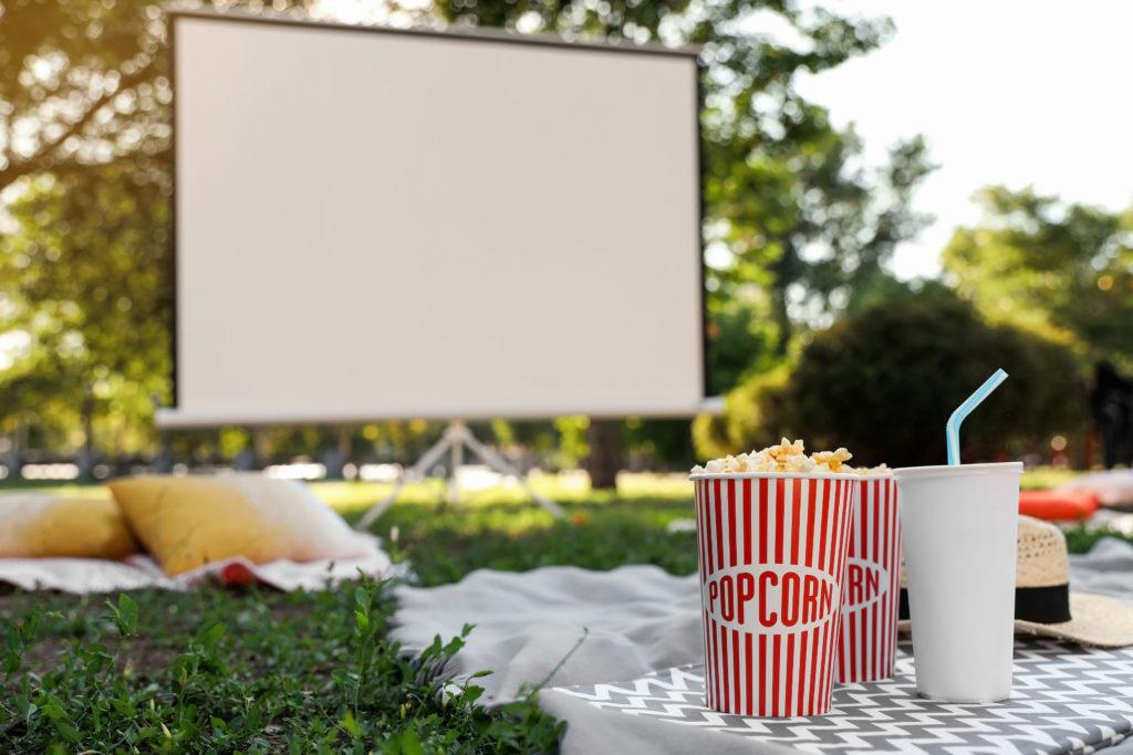 Outdoor Movie Night Set Up